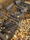 秋天黄色留下报道的公园地面和长凳 免版税库存图片