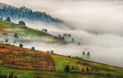秋天黎明 在喀尔巴阡山脉的美好的黎明 图库摄影