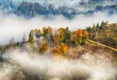 秋天黎明 在喀尔巴阡山脉的美好的黎明 免版税库存图片