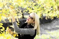 秋天,妇女拿着用手与金黄叶子的一个分支 免版税图库摄影