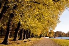 秋天,斯德哥尔摩,瑞典的颜色 库存照片