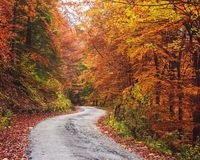 秋天,斯洛伐克 图库摄影