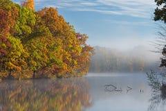 秋天,海岸线Eagle湖 库存图片