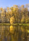 秋天,湖 库存图片