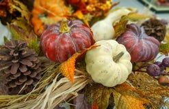 秋天,秋天装饰用南瓜,金瓜,杉木锥体,离开 自然本底 免版税库存图片