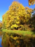 秋天,秋天风景 与五颜六色的叶子的树在一点池塘附近 免版税图库摄影
