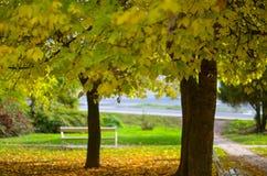 秋天,美好的秋天颜色 免版税图库摄影