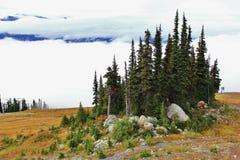 秋天,长平底船,在吹口哨,不列颠哥伦比亚省,加拿大的山 库存照片