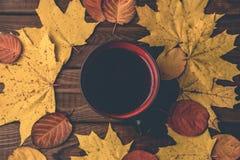 秋天,黄色和橙色秋天离开,热的茶,在木土气背景的温暖的围巾 免版税图库摄影