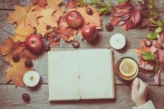 秋天 与空间的老册页文本和茶的在手中,秋叶,在老委员会的苹果装饰  表面无光泽的作用 图库摄影