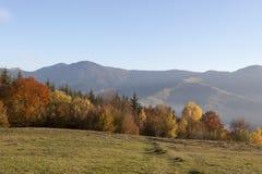 秋天 喀尔巴汗,乌克兰,欧洲 免版税库存照片