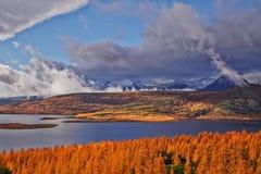 秋天 在雨以后 Jack Londons湖 图库摄影