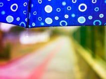 秋天 多雨天气 蓝色伞 图库摄影