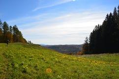 秋天从山顶的风景视图在佛蒙特 免版税库存照片