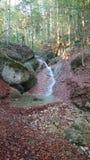 秋天水山绿洲 库存图片