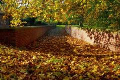 秋天阴影和叶子在老教练桥梁 图库摄影