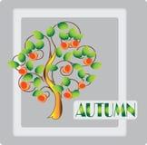 秋天 成熟的苹果 您的横幅的设计框架 免版税库存图片