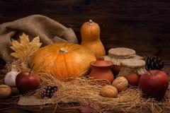 秋天黑暗的背景用南瓜,红色苹果,大蒜,锥体, n 免版税图库摄影