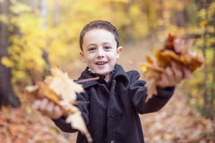 秋天10月季节的小男孩 免版税库存照片