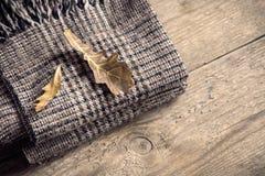 秋天 有干燥叶子的方格的格子花呢披肩 免版税库存图片