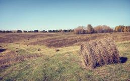 秋天晴朗日的横向 图库摄影