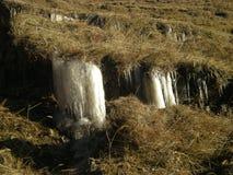 秋天冻结的水 免版税库存照片