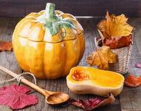 秋天(秋天)静物画用南瓜和南瓜罐 库存图片