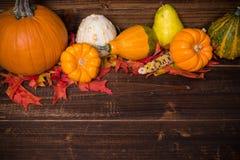 秋天/秋天deocorations 玉米逗人喜爱的女孩印第安感恩主题 库存图片