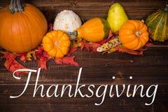 秋天/秋天deocorations 玉米逗人喜爱的女孩印第安感恩主题 库存照片