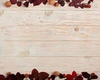 秋天绯红色叶子、榛子和核桃o平的位置框架  免版税图库摄影