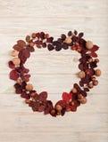 以秋天绯红色叶子的形式心脏的平的位置框架, 免版税库存图片