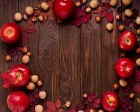 秋天绯红色叶子,榛子,核桃平的位置框架和 免版税库存照片