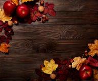秋天绯红色和黄色叶子,榛子, w平的位置框架  图库摄影