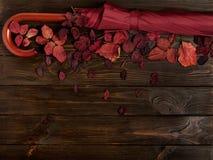 秋天绯红色平的位置框架离开和伞伯根地co 免版税库存照片