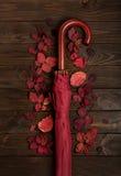 秋天绯红色平的位置框架离开和伞伯根地co 免版税图库摄影