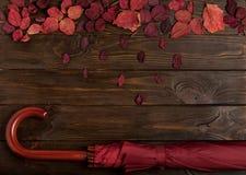 秋天绯红色平的位置框架离开和伞伯根地co 库存图片