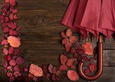 秋天绯红色平的位置框架离开和伞伯根地co 免版税库存图片