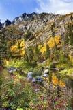 秋天黄色红颜色反射Wenatchee河华盛顿 库存图片