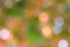 秋天绿色背景-迷离储蓄照片 免版税库存图片