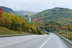 秋天绿色路星期日结构树天气黄色 图库摄影