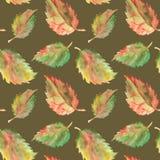秋天绿色黄色红色留下无缝的样式纹理背景 库存图片