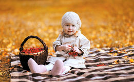 秋天画象孩子和篮子用花楸浆果 库存图片