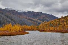 秋天 进入杰克・伦敦湖的小河的嘴  在雪的山 库存照片
