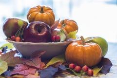 秋天宴餐 库存图片