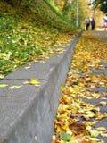 秋天 免版税库存图片