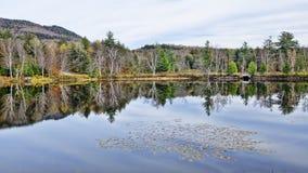 秋天Adirondack湖没有水的反射 13 免版税图库摄影