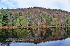 秋天Adirondack湖没有水的反射 13 免版税库存图片