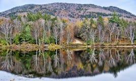 秋天Adirondack湖没有水的反射 13 免版税库存照片