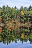 秋天Adirondack湖没有水的反射 13 库存照片