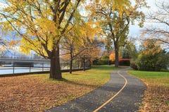 秋天Colous在渥太华 免版税图库摄影